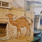 camel_Pared
