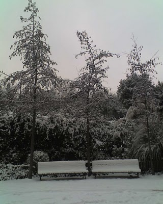 Madrid nevado 4
