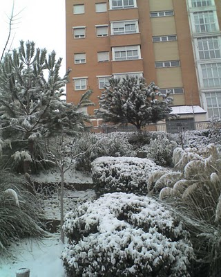 Madrid nevado 5