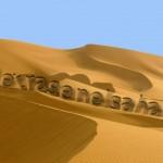 Banner de @pizcos para #letrasenelsahara