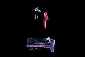"""<h3> Apophysis: Galería de imágenes fractales</h3>    <a href=""""http://piziadas.com/2011/09/apophysis-galeria-de-imagenes.html"""">Apophysis-110911-73</a>"""