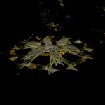Fondos de escritorio: Navidad 2012 (XXI) : Copo de nieve [ Imagen 1280×1024 y HD 1920 x 1080 ]